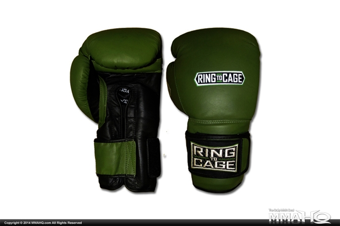Deluxe MiM-Foam Sparring Gloves